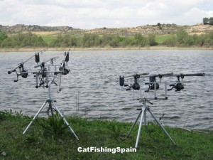 catfishingspain