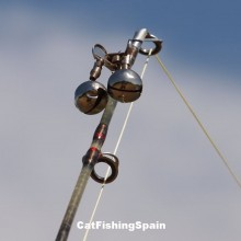 catfishingspain