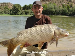 Carp fishing in Mequinenza