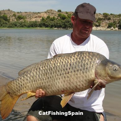 Carp fishing in Mequinenza