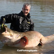 Catfish fishing in Spain