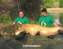 Catfish fishing in Spain