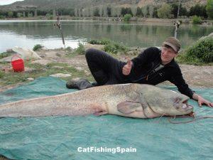 Catfish fishing in Mequinenza