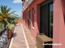 Catfishing spain | accomodation