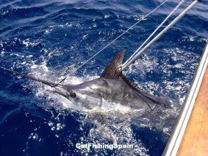 deep-sea fishing in Spain
