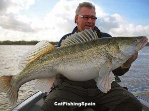 Zander fishing Mequinenza