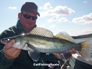 Zander fishing in river Ebro