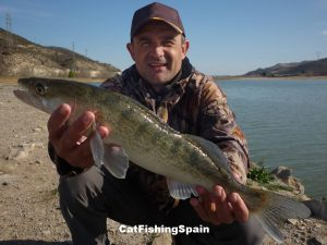 Zander fishing in Mequinenza
